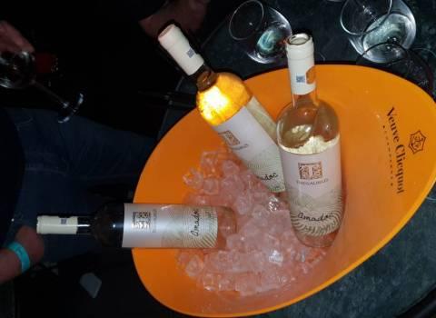 26-01-19 Consumazione minima in discoteca a Timisoara per un tavolo